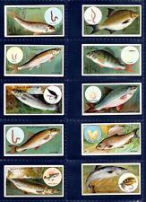 More details for will's fish & bait - quality 1910 set