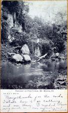 1907 Mt. Morris, IL Postcard: Summer on Pine Creek - Illinois