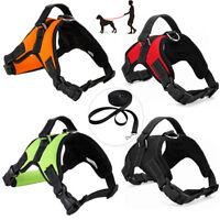 Pet Control Dog Harness Padded Leash Set Walk Collar Safety Strap Training Vest