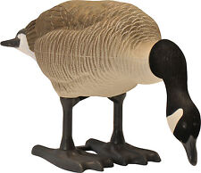 BigFoot Canada Goose Feeder Decoys, 4 Pack