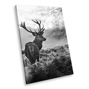 A217 Black White Animal Portrait Canvas Picture Print Large Wall Art Winter Stag