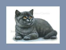 British chat imprimé bleu petit par je garmashova