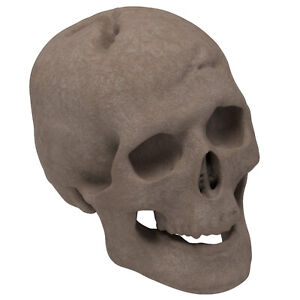 New Regal Flame Human Skull Ceramic Wood Large Gas Fireplace Logs - Brown