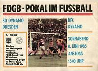 SG Dynamo Dresden Pin Trikot Logo Anstecker Fussball Bundesliga #051