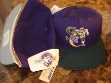 ST CATHERINES STOMPERS  SZ 7 1/8 MINOR LEAGUE PRO-LINE 90'S  HAT CAP VINTAGE