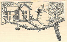 Cardinal Scene Wood Mounted Rubber Stamp IMPRESSION OBSESSION Bird On Branch New