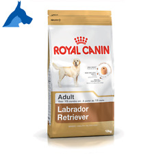 Royal Canin Labrador Retriever Adult - Kg. 12