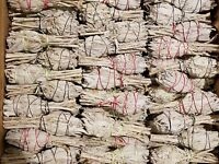 California White Sage Smudge Sticks Bulk Smudging Choose 1 5 10 50 100 Wholesale