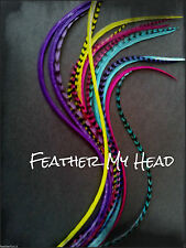 "Feather Hair Extension, 6 Super Long 11""- 14"" Whiting Eurohackle, DIY Kit Beads"