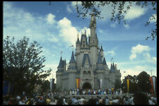 382021 Disney World Castello Disney World Florida A4 FOTO STAMPA