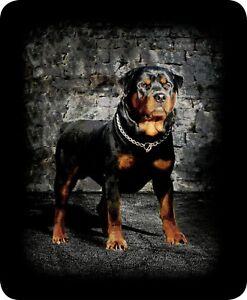 Queen Rottweiler J Charron Guard Dog Mink Faux Fur Blanket Warm Super Soft Full