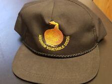 RARE Vintage Trucker Hat Cap Farmer Asgrow Vegetable Seeds Pedroza USA Onion Pic