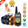 875 Yard Dog Shock Collar Remote Waterproof IP67 Electric For Large Pet Training