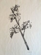 Edna Boies Hopkins ink painting study for woodblock print Arts & Crafts Mission
