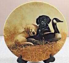 "Labrador Retriever puppies Plate Yellow & Black Labs ""Ducking Duty"" Lynn Kaatz"