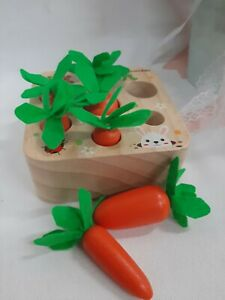 Harvest Carrots to Farm Matching Game Educational Gift Toy for Boys Girls NEW