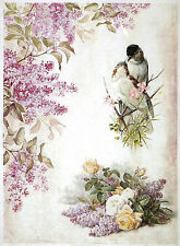 Rice paper -Lilac flower and two birds- for Decoupage Scrapbooking Sheets
