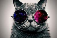 A1 | Space Cat Poster Art Print 60 x 90cm 180gsm Kitten Galaxy Funny Gift #8948