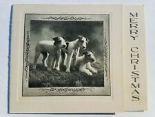 1920s Vintage Airedale Terrier / Lakeland Dog Christmas Card - So Cute!
