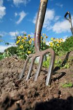 Kit jardin potager lot de + de 1000 Graines Non Traité legumes  plantes anciens