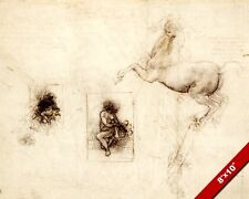 LEONARDO DA VINCI STUDY SKETCH PAINTING OF LEDA & HORSE REAL CANVAS ART PRINT