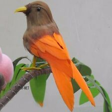 Fake Artificial Small Bird Realistic Taxidermy Natural Home Decor Toy Gift 12cm