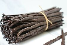 30 Madagascar Grade A Gourmet Bourbon Vanilla Beans