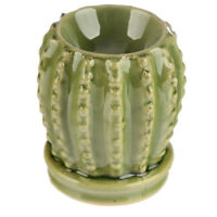 Small Dark Green Cactus Wax Warmer/Burner & 10 Handpoured Scented Melts