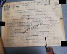 Arbre généalogique Famille Van Nuffel 1980 't Serhuygs-De Coudenberg-Chesnoy(T8)