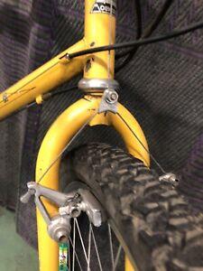 "vintage gary fisher mountain bike Procaliber 23"" TT"