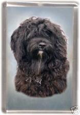 Tibetan Terrier Fridge Magnet by Starprint