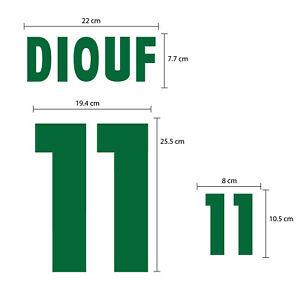 DIOUF #11 Senegal Home World Cup 2002 FLOCK VELVET NAME NUMBER PRINT