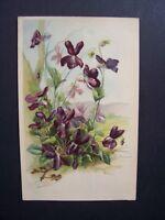 CPA  -  Fleurs sauvages  /  illustrateur : E. Guillot  ( carte gaufrée )