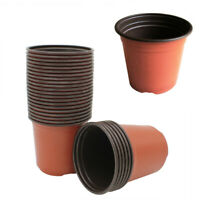 10/100PCS Plant Flower Pot Flowers Nursery Vegetables Starting Plant Container