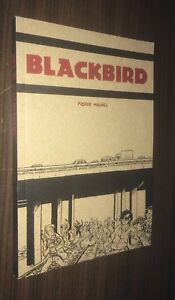 BLACKBIRD TPB -- Pierre Maurel -- Skateboarding Anarchists -- Conundrum Intl OOP