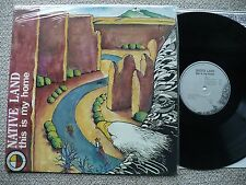 NATIVE LAND- THIS IS MY HOME 1985 MUSE ART RECORDS PRIVATE PSYCH NEW AGE MIX NM!