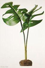 Hagen Exo-Terra Smart Plant Philodendron Terrarium Plant