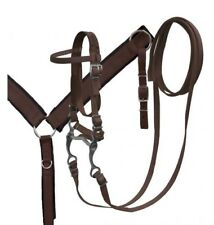 Showman BROWN Nylon Bridle, Breast Collar & Grazing Bit Set! NEW HORSE TACK!
