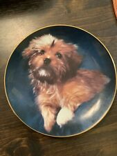 Armstrong's Art On Porcelain Plate, 1984 Limited Edition, Yorkie Puppy