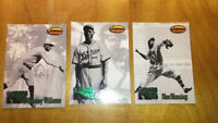 1993 Ted Williams Baseball Card Co Breakout Set Of 3 Negro Leagues
