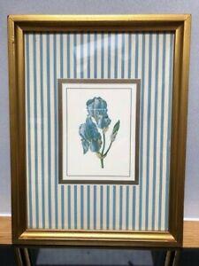 Vintage Retro Framed Glazed Picture Botanical Print Wall Art Irises Shabby Chic