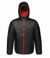 Regatta Womens Acadia Insulated Padded Hooded Jacket. RRP £55
