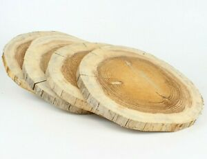 FICHTE Restposten Holzscheiben Baumscheiben Floristik Deko 4 Stk 25-30 cm