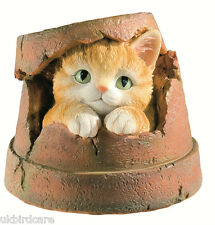 Kitten Flower Pot Garden Ornament - Cat in Flower Pot Ornament