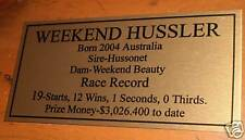 Weekend Hussler Gold Plaque **Free Postage