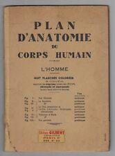 Antique 1884 Plan d Anatomie du corps Humain