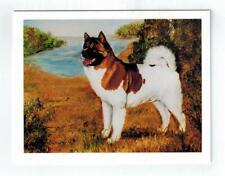 New Akita Pet Dog Profile Notecard Set 6 Note Cards By Ruth Maystead (Aki-6)