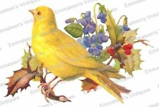 Vintage Image Shabby Yellow Canary And Holly Waterslide Decals BIR843