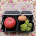 5/10 Pcs 3 Compartment Food Storage Containers With Lids Bento Lunchbox NEW LC