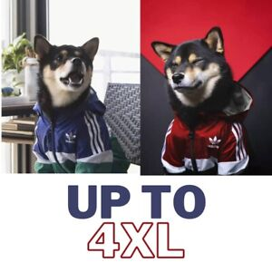 Designer Adidas Dog clothes Rain Jacket windbreaker Puppy Pet  Clothing L-4XL